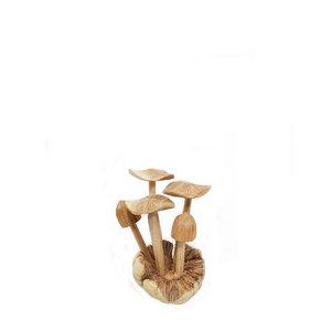 paddenstoelen-platte-hoofden-hout-bali