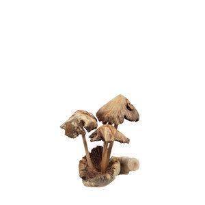 paddenstoelen-hout-bali-gekartelde-hoofden